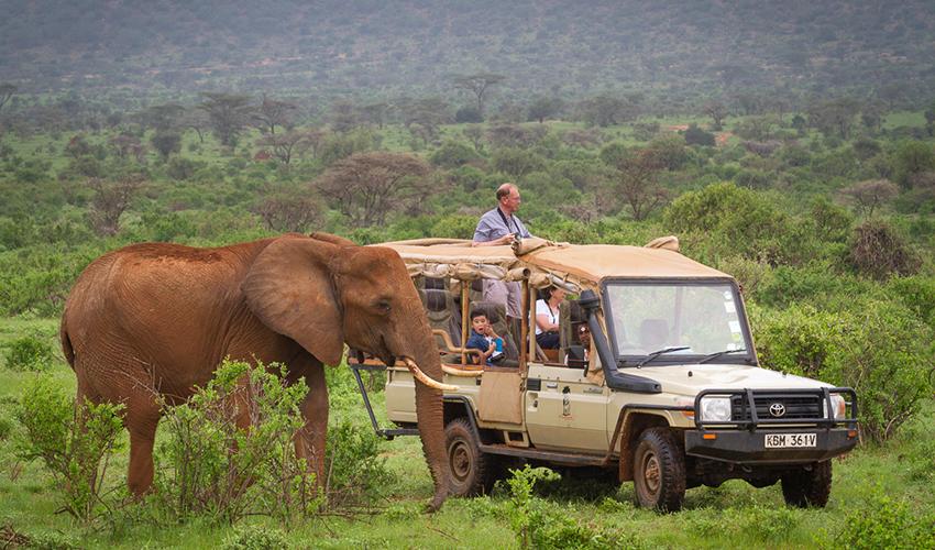 Elephant Bedroom Camp Kenya